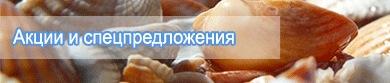 away.php?to=http%3A%2F%2Fwww.vesmirspb.ru%2Fhot