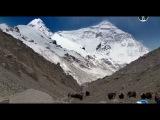 Эверест: История трагического восхождения....