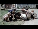 Александр маленький (1981) Владимир Фокин