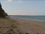 Нудистский пляж в Любимовке!!!!