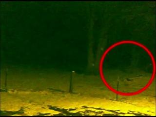 Підборка відео із камер стеження