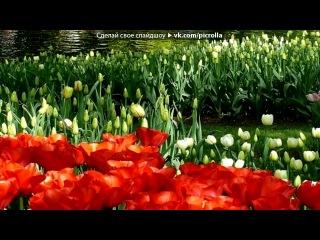 «Весна идет,весне дорогу» под музыку WaP.Ka4Ka.Ru - Красивейшая песня о любви под гитару. Послушай не пожалеешь - Без названия. Picrolla