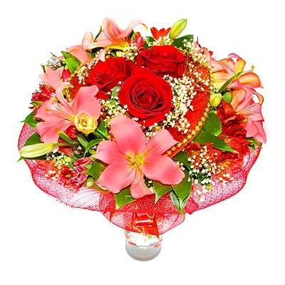 http://cs5146.userapi.com/u103172956/-14/x_fb1d5eab.jpg