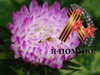 Маргарита Шикита, 26 июня 1990, Луганск, id59004498