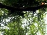 PKYEK - Abhay _ Piya love scene 219 - 4th July 2011