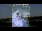 «Mоя свадьба» под музыку СБОРКА - Свадебные песни. Picrolla