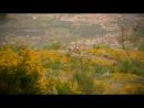 Rob Williams - Live to Ride - Portugal 2013