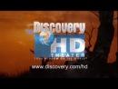 Джереми Пивен в фильме Путешествие по Индии/ Jeremy Piven's Journey of a Lifetime 1 of 2