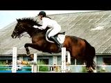 «***Конкур ну и просто лошади***» под музыку Алексей Хворостян - Падали, но поднимались. Picrolla