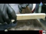 ЧУДО ТЕХНИКИ - Робот-пылесос, гастроскопия с трансляцией, химия и жизнь 02.12.2012