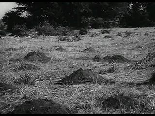 Подготовка снайпера( 3 рейх)