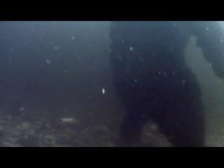 Величайшие явления природы. 2 серия. Великий исход лосося