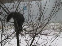 Иван Иванов, 1 января , Москва, id166071194