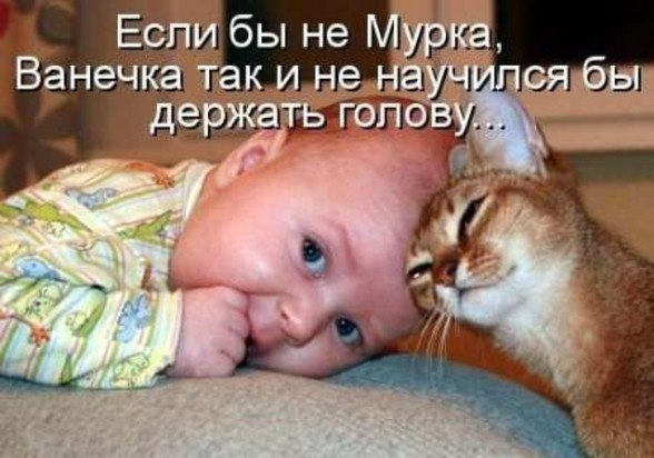 Отправлено через vk com fotiko