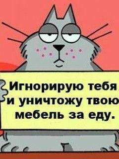 ВКонтакте Коля Кухарец фотографии
