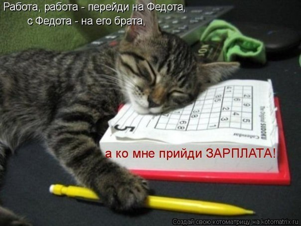 Александр Митрофанов, Подпорожье - фото №5