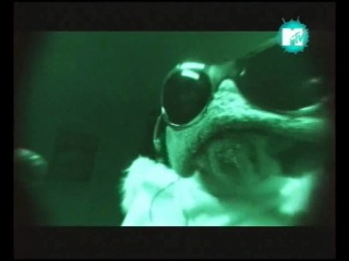 Мохнатики 1 серия MTV