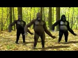 Dancing Gorillas
