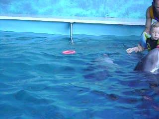 Лечение Алёши в Одесском дельфинарии Немо 24 08 2009 1 часть