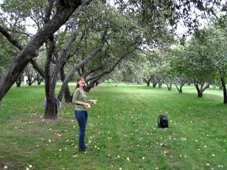 Коломенское. Яблоневый сад