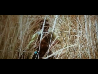 [Hindi] Gangs of Wasseypur 2 *2012* DVDscr 1 CD Rip Xvid [DDR]