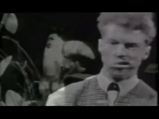 The Trashmen - Surfin Bird (1963)