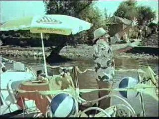 Sosesc pasarile calatoare (1984)
