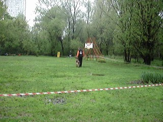 Выступление А.Мелихова с н.о. Лайма ф. Лилу Лэнд ( Вьюга ) на чемпионате Москвы 2012 по национальным видам дрессировки.