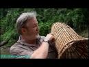 BBC «Тропический рай Борнео» (Документальный, 2007) 2 серия