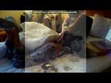 «Со стены Давай останемся никем....» под музыку Дима Карташов - Романтика 21 Века (Меланхолик и Эгоистка) NEW 2011. Picrolla