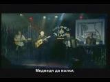 Вячеслав Бобков - Шишки да иголки