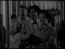 Cameriera bella presenza offresi . 1951