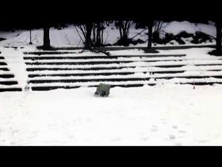 Фристайл. Танцы со сноубордами.