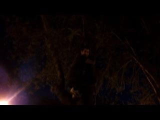 Deli Kurt Ağaçta