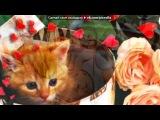 «с днём рождения!!!» под музыку Позитивная песня про День Рождения!  - С Днем Варенья=))))))))))). Picrolla