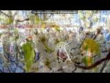 «просто» под музыку Ярослав Евдокимов - Майский вальс (Музыка: И. Лученок Слова: М. Ясень 1985г). Picrolla