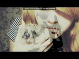 «Со стены друга» под музыку вика - Psyho Squirrel -O.M.E. ( песня из сериала Барвиха) . Picrolla