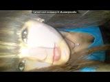 «Siziu» под музыку NadiR (Negd Pul) feat.Shami - - Скачать Запомни-I love you Пойми что-I need you..... - Без названия. Picrolla