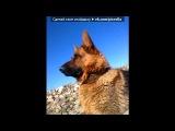 pk под музыку Tonic feat Erick Gold - Lead The Way (Radio edit). Picrolla