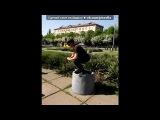 Я и Мои друзья!!! под музыку Dave Kurtis - Slide (Original mix). Picrolla
