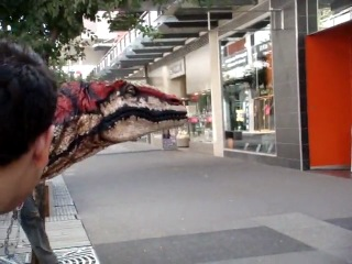 Velociraptor in Melbourne
