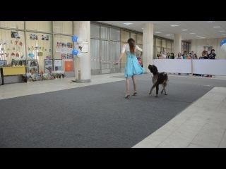 Донская весна 2013 Рощинина Алина и драатхар Лорд
