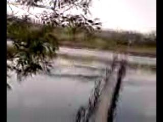 ррикол на озере