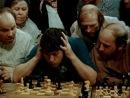 Двенадцать стульев - пособие для начинающих шахматистов (1976).