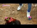 Молодожёны / We Got Married - [ЧАСТЬ 2] Тэмин и НаЫн 14 эпизод; Джин Ун и Чжун Хи 25 эпизод