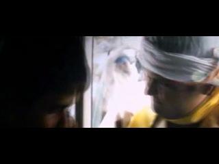 [Hindi] Shanghai (2012) 1CD - HDSCAM V2 - [Audio-Video Cleaned] MP3 - x264 [LiLThuG]