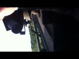Бошкотряс на крыше поезда