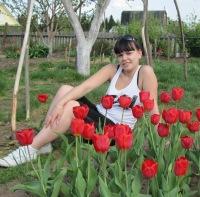 Вера Палешева, Киров