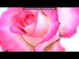 1 РОЗОВАЯ РОЗА))))))))))))))))))) под музыку См@йлик - Твой Смайлик. Picrolla
