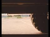 Людей нет и птицы затихли(ДМБ) Одна из лучших сцен фильма